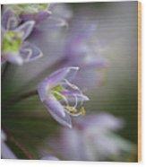 Delicate Purple Flowers Wood Print