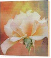 Delicate Rose On Color Splash Wood Print