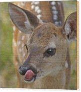 Delicious Deer Wood Print