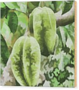 Delicious Star Fruit Wood Print