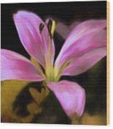 Delightful Daylily Wood Print