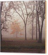 Delphi Park Annarbor Michigan In Fog Wood Print
