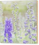 Delphiniums Wood Print