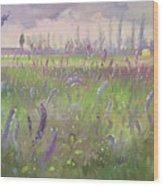 Delphiniums, Storm Passing Wood Print
