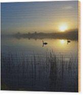 Delta Lakes Wood Print