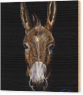 Dem-donkey Wood Print