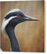 Demoiselle Crane Wood Print