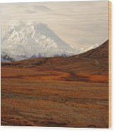 Denali And Tundra In Autumn Wood Print