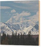 Denali In Broad Pass Wood Print by Donna Quante