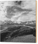 Denali National Park 4 Wood Print