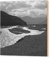 Denali National Park 5 Wood Print