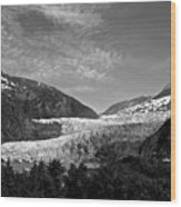 Denali National Park 6 Wood Print
