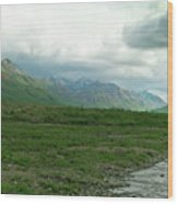 Denali National Park Landscape 2 Wood Print