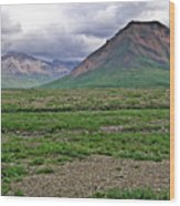 Denali National Park Landscape 3 Wood Print