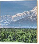Denali Panorama Wood Print