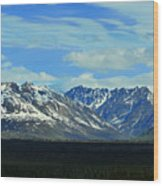Denali Valley Wood Print