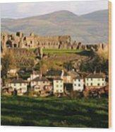 Denbigh Castle Wood Print