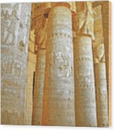 Dendera Temple Wood Print