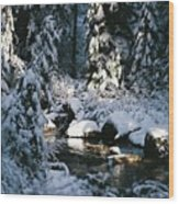 Denny Creek Wood Print