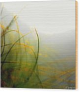 Dense Fog Wood Print