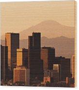 Denver Skyline 2003 Wood Print