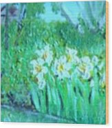Dependable Daffodils Wood Print