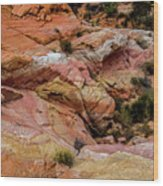 Depth Of The Canyon Wood Print