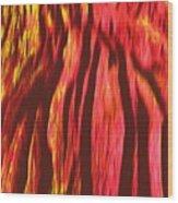 Depths Of Mordor Wood Print