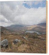 Derrynablunnago, Ireland Wood Print