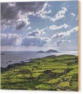 Derrynane National Park Along Ring Of Kerry, Ireland Wood Print