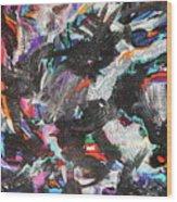 Dervish And The Rainbow  Wood Print