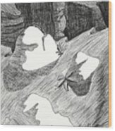 Canyon Wood Print