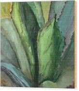 Desert Agave Wood Print