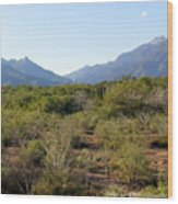 Desert And Mountains In Mexico Cabo Pulmo Wood Print