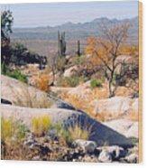 Desert Autumn Wood Print