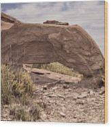 Desert Badlands Wood Print