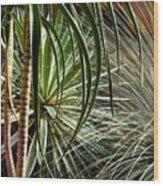 Desert Botanical Wood Print