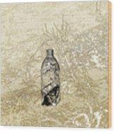 Desert Bottle Wood Print