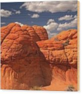 Desert Brain Rocks Wood Print