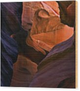 Desert Bridge Wood Print
