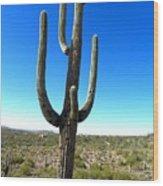 Desert Cactus 3 Wood Print
