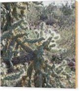 Desert Cactus 4 Wood Print