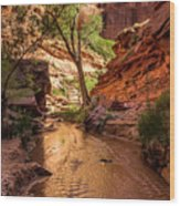 Desert Canyon Paradise - Coyote Gulch - Utah Wood Print