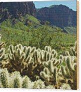 Desert Cholla 1 Wood Print