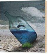 Desert Dolphin Bottle Nature Wood Print