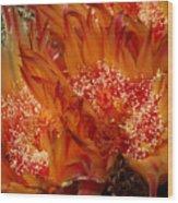Desert Fire Wood Print