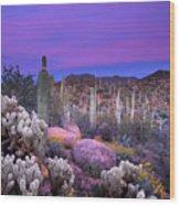 Desert Garden Wood Print by Eric Foltz