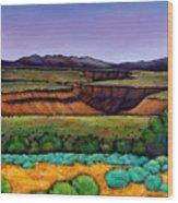 Desert Gorge Wood Print