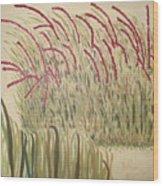 Desert Grasses Wood Print