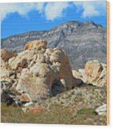 Desert Hikers Wood Print